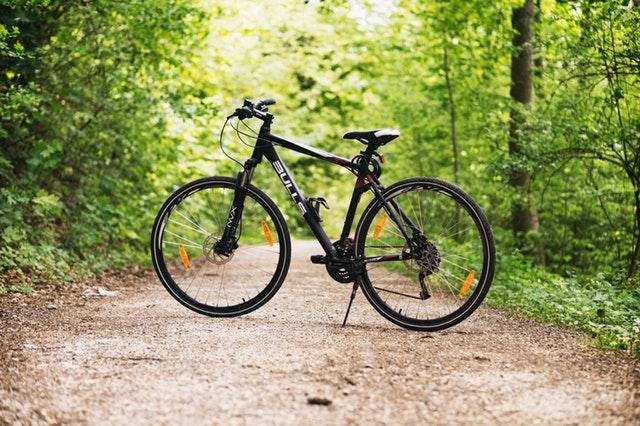 Blankets Creek Mountain Bike Trail System